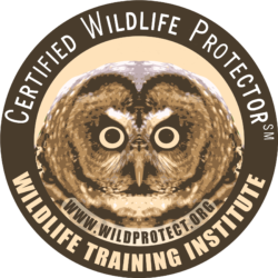 Wildlife Training Institute
